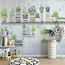 Wandbild Tapete Nordic Einfache Bonsai Kaktus
