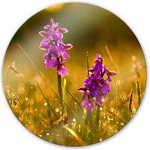 Wandbilder - Glasbild Blumen im Morgentau - rund
