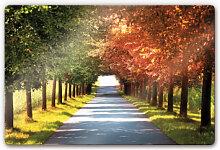 Wandbilder - Glasbild Herbst