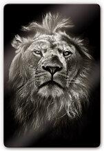 Wandbilder - Glasbild Lion