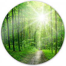Wandbilder - Glasbild Sunny forest - rund