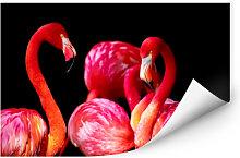 Wandbilder - Wallprint Pink Flamingo