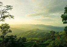 wandmotiv24 Fototapete Berge mit Wäldern, XL 350