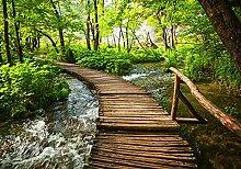 wandmotiv24 Fototapete Fluss mit Holz Brücke XL