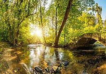 wandmotiv24 Fototapete Wald mit Brücke, XXL 400 x