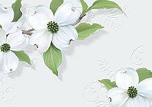 wandmotiv24 Fototapete Weisse Blumen Gips Ornament