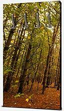 wandmotiv24 Garderobe Bunte Herbstlandschaft