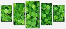 wandmotiv24 Leinwandbild Grünpflanzen Hintergrund