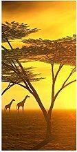 wandmotiv24 Türtapete Afrika 100 x 200cm (B x H)