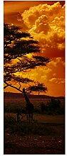 wandmotiv24 Türtapete Afrika Sonnenuntergang 80 x