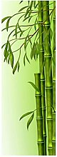 wandmotiv24 Türtapete Bambuszweige 70 x 200cm (B
