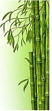 wandmotiv24 Türtapete Bambuszweige 90 x 200cm (B