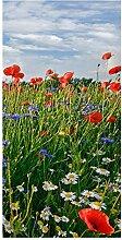 wandmotiv24 Türtapete Blumenwiese 100 x 200cm (B