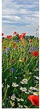 wandmotiv24 Türtapete Blumenwiese 70 x 200cm (B x