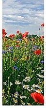 wandmotiv24 Türtapete Blumenwiese 80 x 200cm (B x
