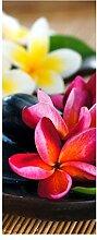 wandmotiv24 Türtapete Fangipani Blumen Tapete