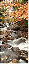 wandmotiv24 Türtapete Fluss im Herbst 90 x 200cm