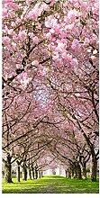 wandmotiv24 Türtapete Kirschbaumallee 100 x 200cm