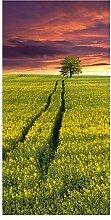 wandmotiv24 Türtapete Landschaft mit einem Feld