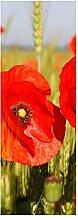 wandmotiv24 Türtapete Mohnblumen 70 x 200cm (B x