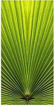 wandmotiv24 Türtapete Palmblatt Nahaufnahme 100 x