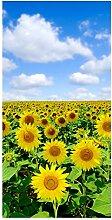 wandmotiv24 Türtapete Sonnenblumenfeld 100 x