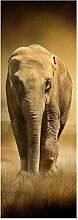 wandmotiv24 Türtapete Steppenelefant Afrika 70 x