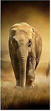 wandmotiv24 Türtapete Steppenelefant Afrika 90 x