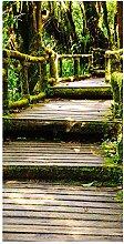 wandmotiv24 Türtapete Treppe im Urwald 100 x