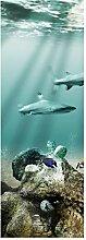 wandmotiv24 Türtapete Unterwasserschatz 70 x