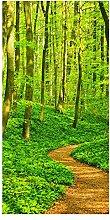 wandmotiv24 Türtapete Waldpfad 100 x 200cm (B x