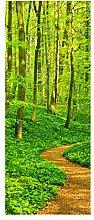wandmotiv24 Türtapete Waldpfad 80 x 200cm (B x H)