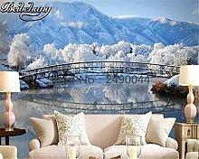 Wandtapete 3D Romantische Eiswelt TV Hintergrund