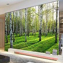 Wandtapete 3d stereoskopische moderne Birkenwald