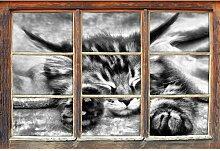 Wandtattoo Baby-Katze, rote Bettdecke East Urban