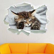 Wandtattoo Baby-Katze rote Bettdecke