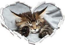 Wandtattoo Baby-Katze, rote Bettdecke