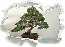 Wandtattoo Bonsai Baum East Urban Home