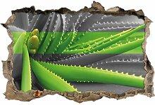Wandtattoo Grüne Aloe-Vera-Pflanze East Urban Home