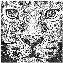 Wandtattoo Katzen Kopf als Gemälde Wandsticker