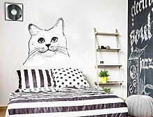 Wandtattoo Katzen Kopf schwarz weiß Wandsticker