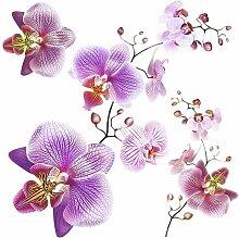 Wandtattoo Orchideen Brayden Studio