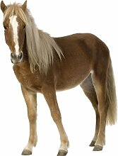 Wandtattoo Pferd 3 93 x 70 cm