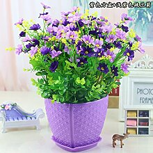 WANG-shunlida Blumen springen Ju LAN Emulation Flower Bonsai Blumentopf Set Tisch Wohnzimmer Inneneinrichtung Dekoration Daisy Flower, T