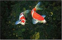 WANGXIAO Koi Fisch Lotus Leinwand druckt Feng Shui