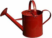 wangxn Bewässerung Topf Metall verzinkt Garten-Wasserkocher Aktivität Head Dual Use 6L