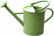 wangxn Dose-Bewässerung pulverbeschichtet Metall verzinkt Kopfbrause Düse 3.5Liter green Foto Farbe