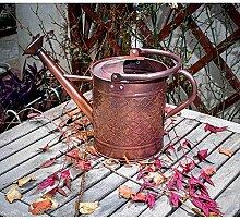 wangxn Dose-Bewässerung pulverbeschichtet Metall verzinkt Kopfbrause Düse 3.5Liter copper old color Foto Farbe