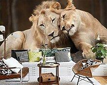 Wapel Katze Tiere Fototapete Tv House Lion Tapete