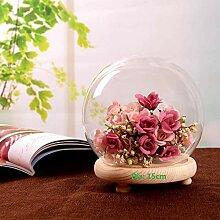 Warmiehomy Deko Glasglocke Kuppel mit Holzboden
